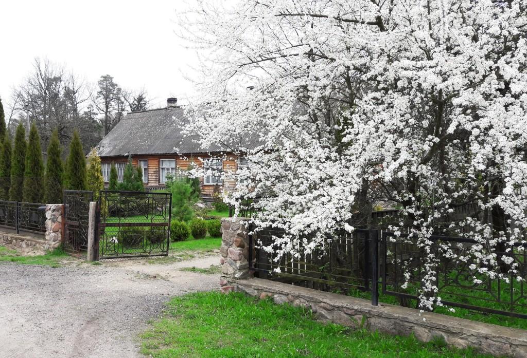 Деревня Лядские