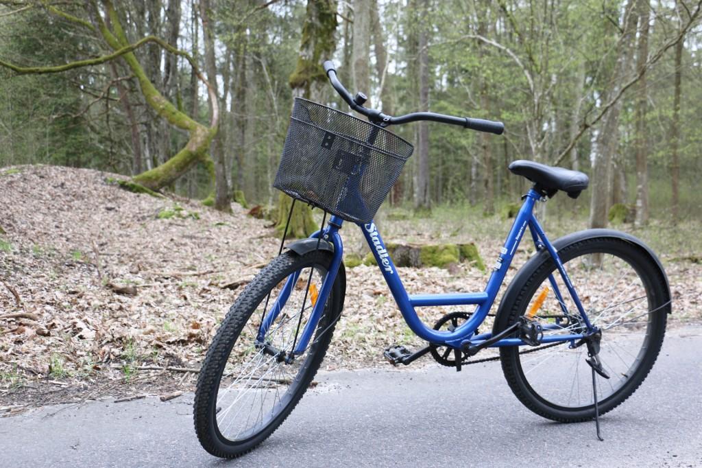 Беловежская пуща на велосипедах